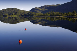 Orange buoys and forested hills reflected in a smooth lake