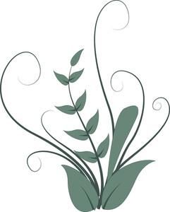 Organic Designs