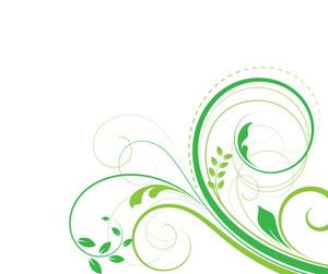Organic Nature Floral Design