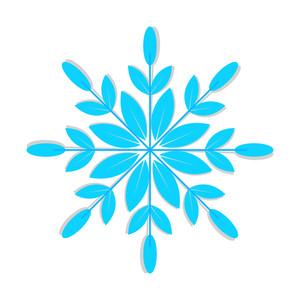 Organic Snowflake