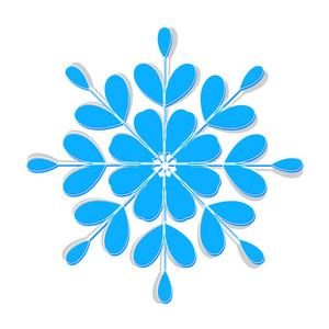 Ornate Winter Snowflake