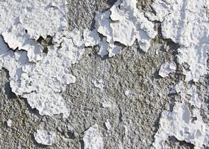Paint Peeling 12 Texture