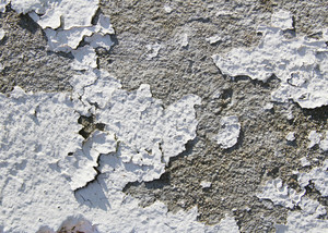 Paint Peeling 14 Texture