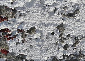 Paint Peeling 16 Texture