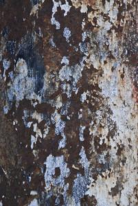 Paint Peeling 27 Texture