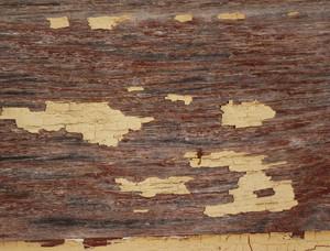 Paint Peeling 31 Texture