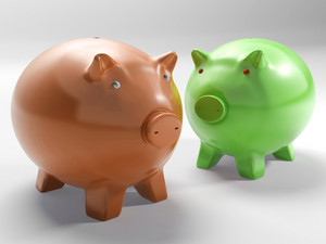 Pair Of Pigs Shows Investment And Security