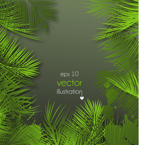 Palm Leaves Background Vector Illustration