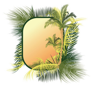 Palm Tree Frame