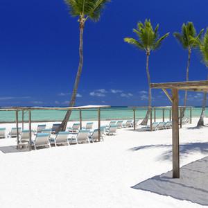 Palm tree on a white sand beach resort