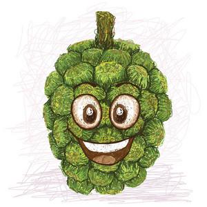 Pandanus Happy Fruit