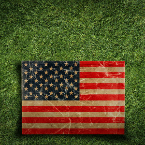 Paper Flag Of Usa On Grass