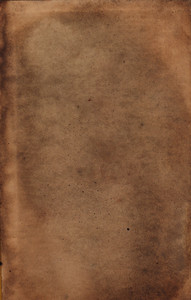 Paper Grunge 10 Texture