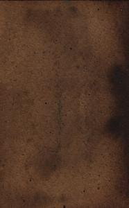 Paper Grunge 14 Texture