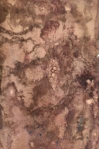 Paper Grunge 23 Texture