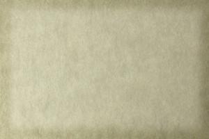 Paper Grunge Texture 33