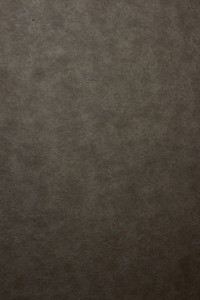 Paper Grunge Texture 34