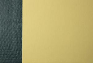 Paper Grunge Texture 35