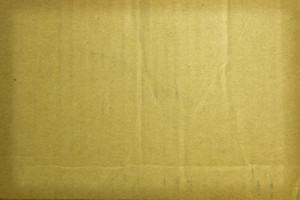 Paper Grunge Texture 38
