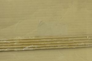 Paper Grunge Texture 44