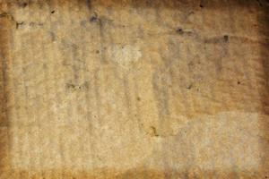 Paper Grunge Texture 4