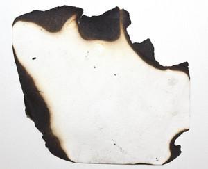 Paper Grunge Texture 65