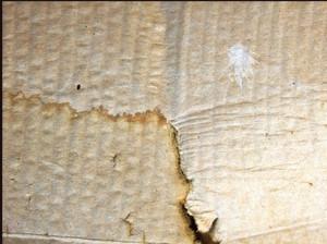 Paper Grunge Texture 6