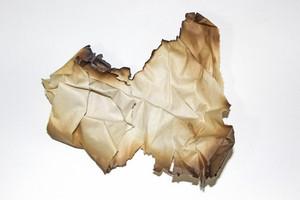 Paper Grunge Texture 80