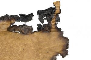 Paper Grunge Texture 83