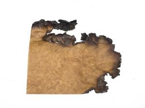 Paper Grunge Texture 85
