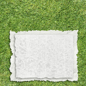 Paper On Grass