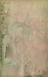 Paper Stained 43 Texture