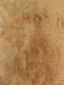Paper Stained 68 Texture