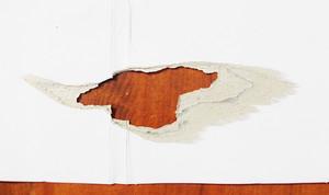 Paper Texture 70