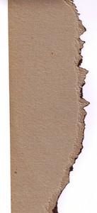 Paper Torn 13 Texture
