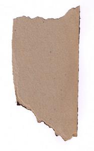 Paper Torn 14 Texture