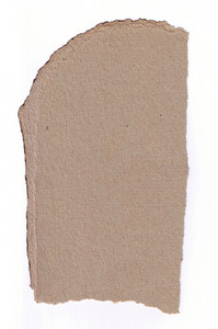 Paper Torn 16 Texture