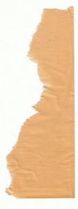 Paper Torn 19 Texture
