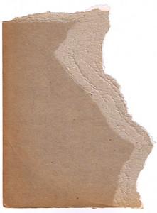Paper Torn 20 Texture