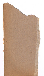 Paper Torn 21 Texture