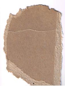 Paper Torn 24 Texture
