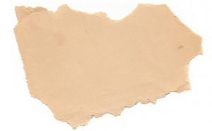 Paper Torn 29 Texture