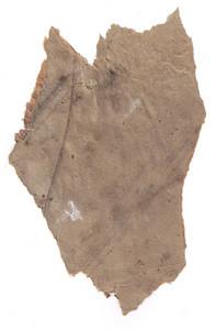 Paper Torn 3 Texture