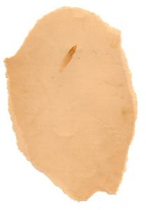 Paper Torn 34 Texture