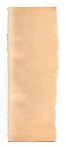 Paper Torn 36 Texture