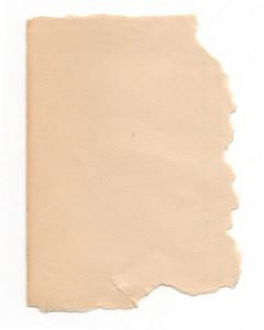 Paper Torn 39 Texture