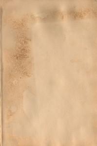 Paper Vintage 110 Texture
