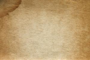 Paper Vintage 44 Texture