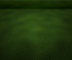 Perspectiv Green Leather Texture Stage Background