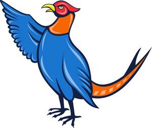 Pheasant Bird Fin